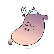 胃腸.jpg